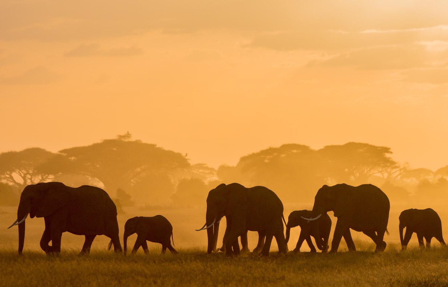 Prachtig Tanzania